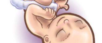 полезные советы для быстрой беременности