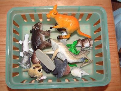 Изучаем животных по методу Монтессори