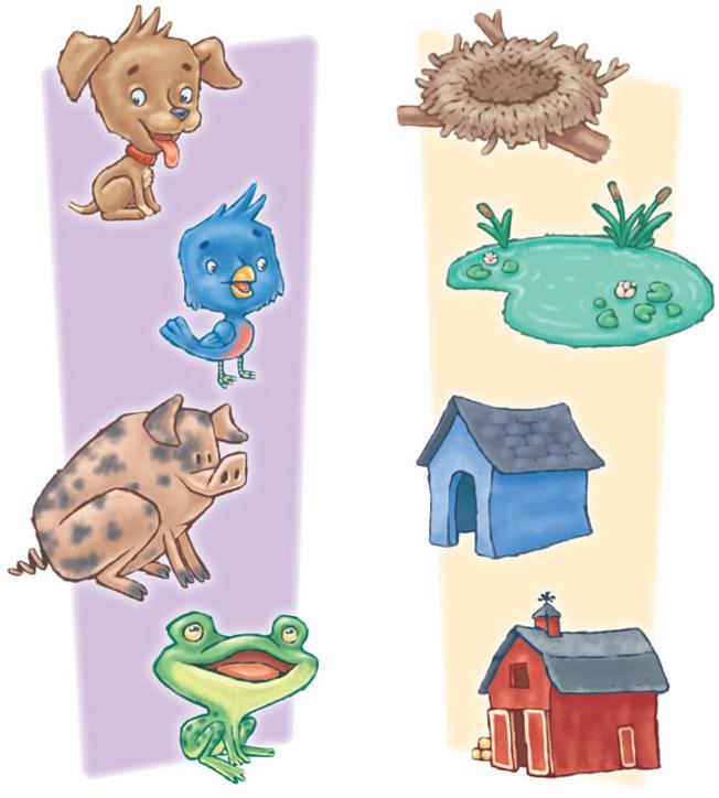 кто где живет животные игра