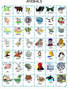 английский язык для детей животные