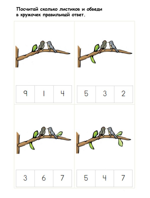 птицы игры