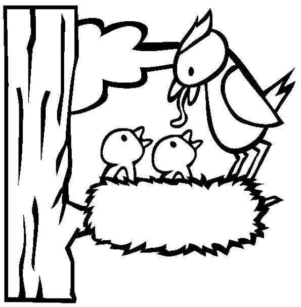 раскраски птицы весной для детей