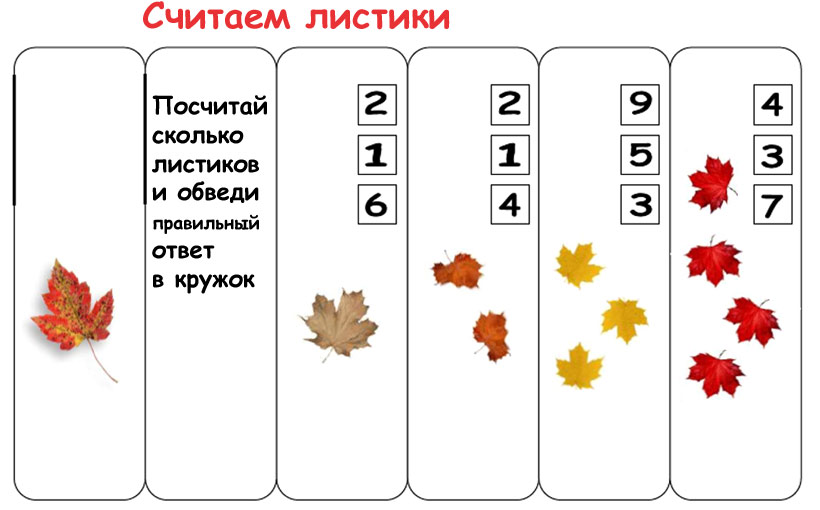 листья картинки