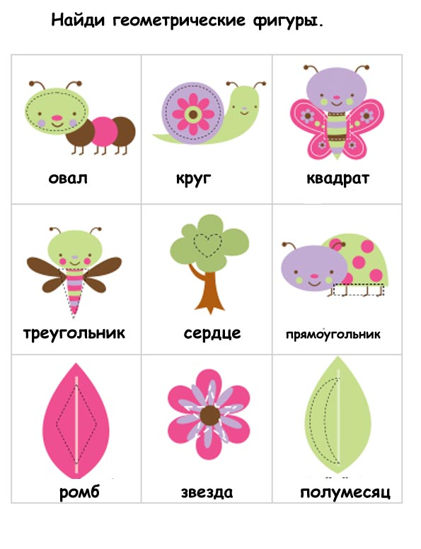 насекомые карточки для детей