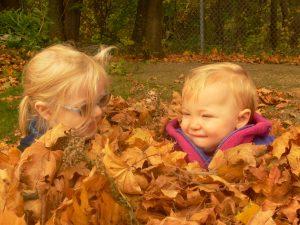 big proof of fall 2008 300x225 Осень картинки для детей