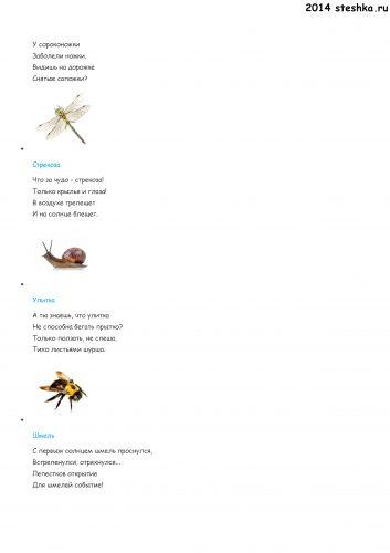 stihipronasekomuh(2)