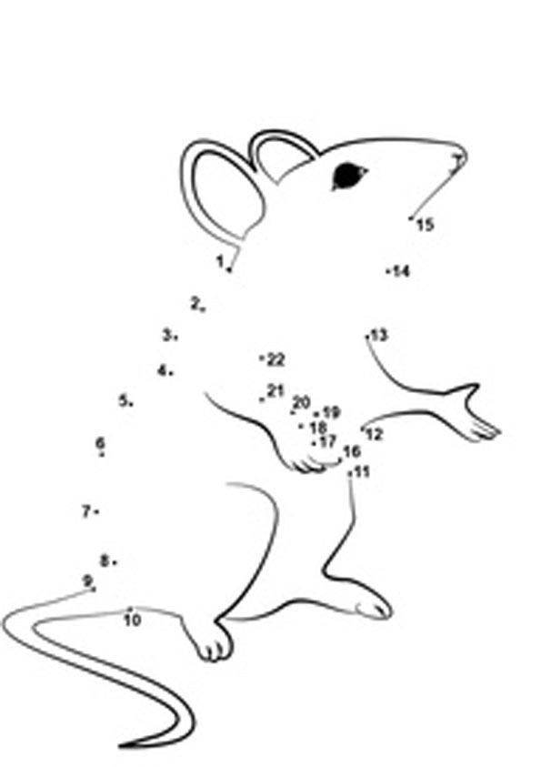 Математическая раскраска сова