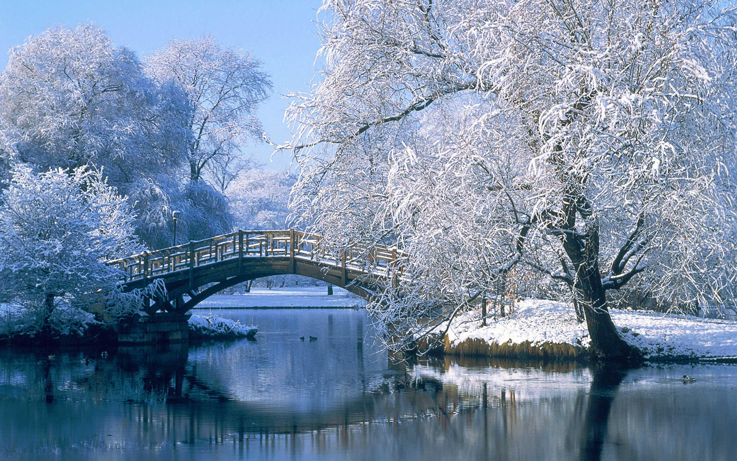 Красивые зимние картинки для детей