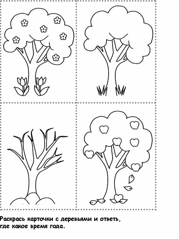 раскраска дерево в различные времена года