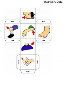 Тело человека: картинки для детей