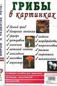 Съедобные и несъедобные грибы в картинках для детей