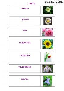 Цветы - красивые детские картинки