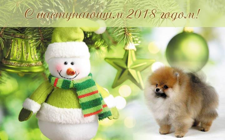 новогодняя открытка 2018 год собаки7
