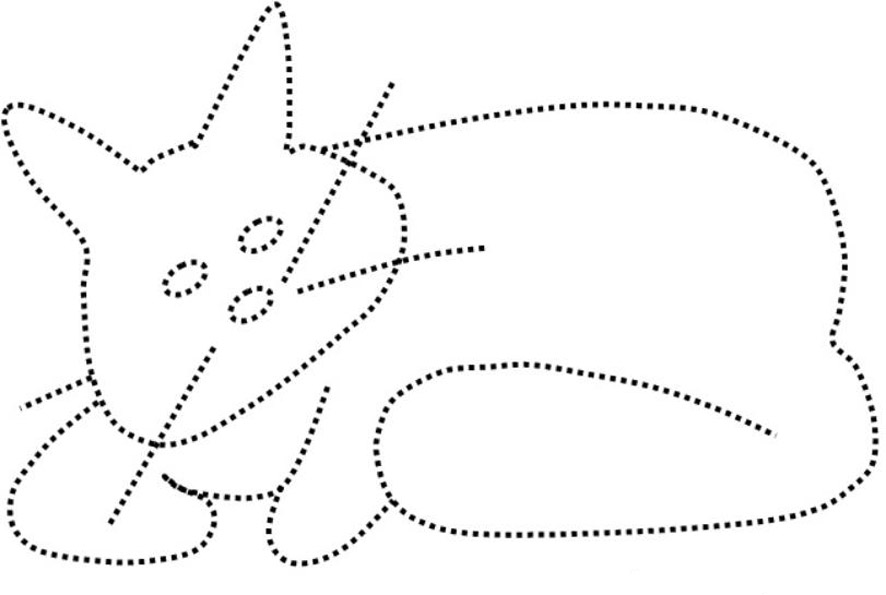 обводилка кошка