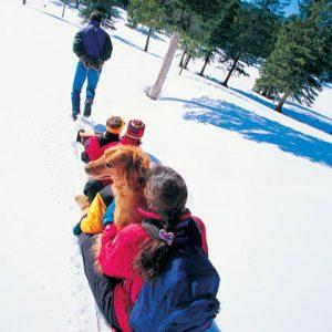 Самые популярные зимние детские игры и забавы