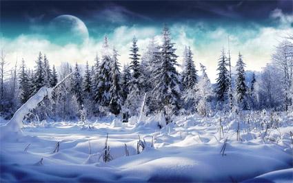 зима конспект занятий