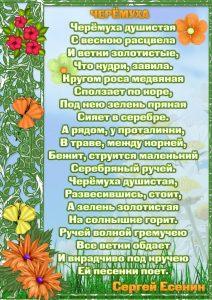 стихи о весне2