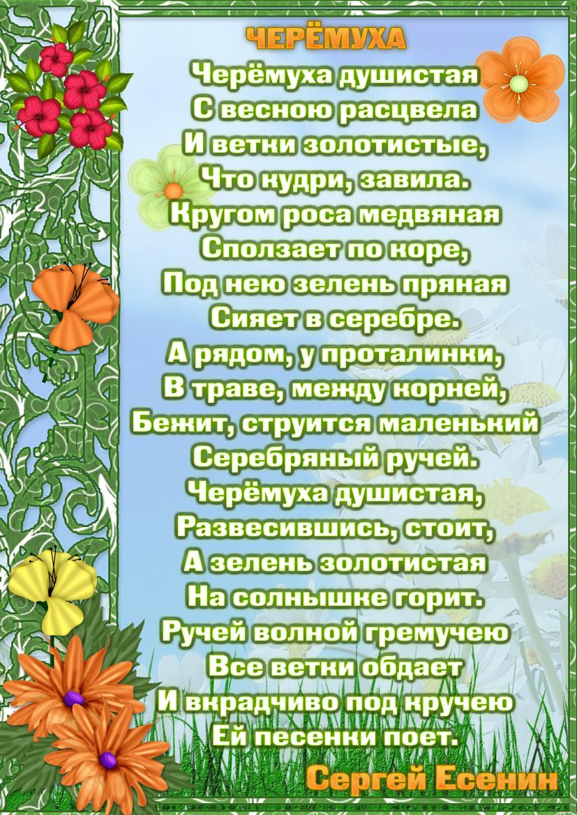 «Сукин сын» - Стихотворение Сергея Есенина
