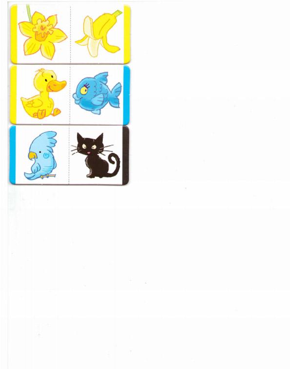 картинки карточки цвета