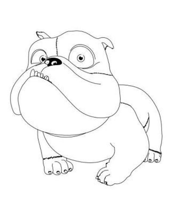 Собака из Рио 2