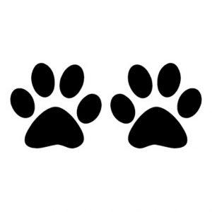 трафарет лапы кошек