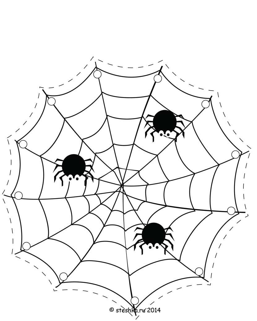 Картинка паук плетет паутину для детей