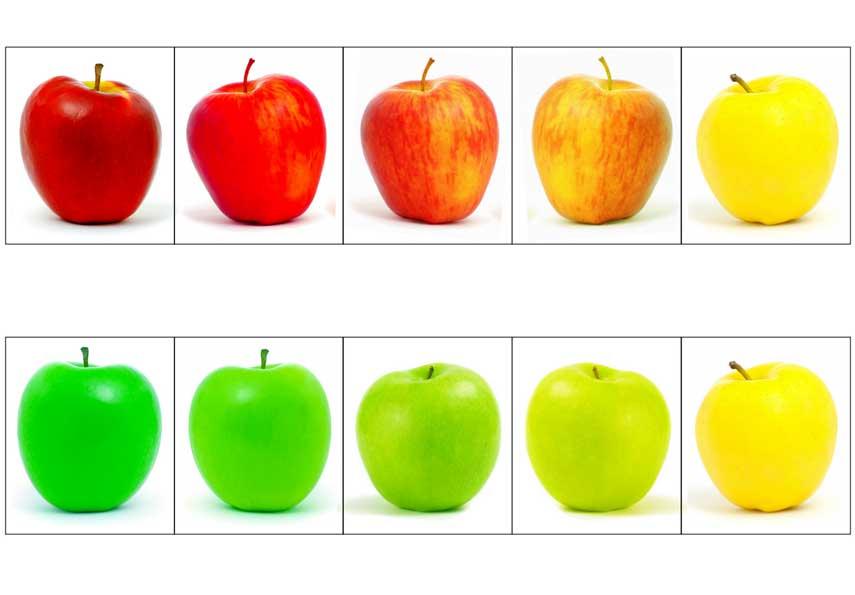 учим цвета с детьми