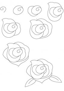 роза в форме улитки