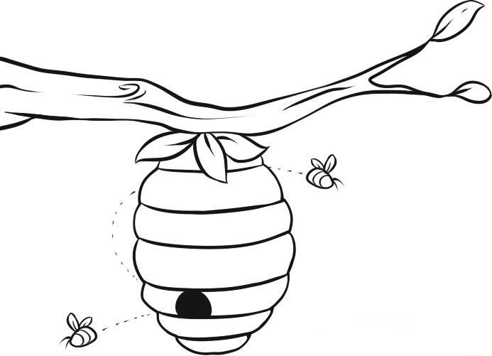 Пчела и улей раскраска