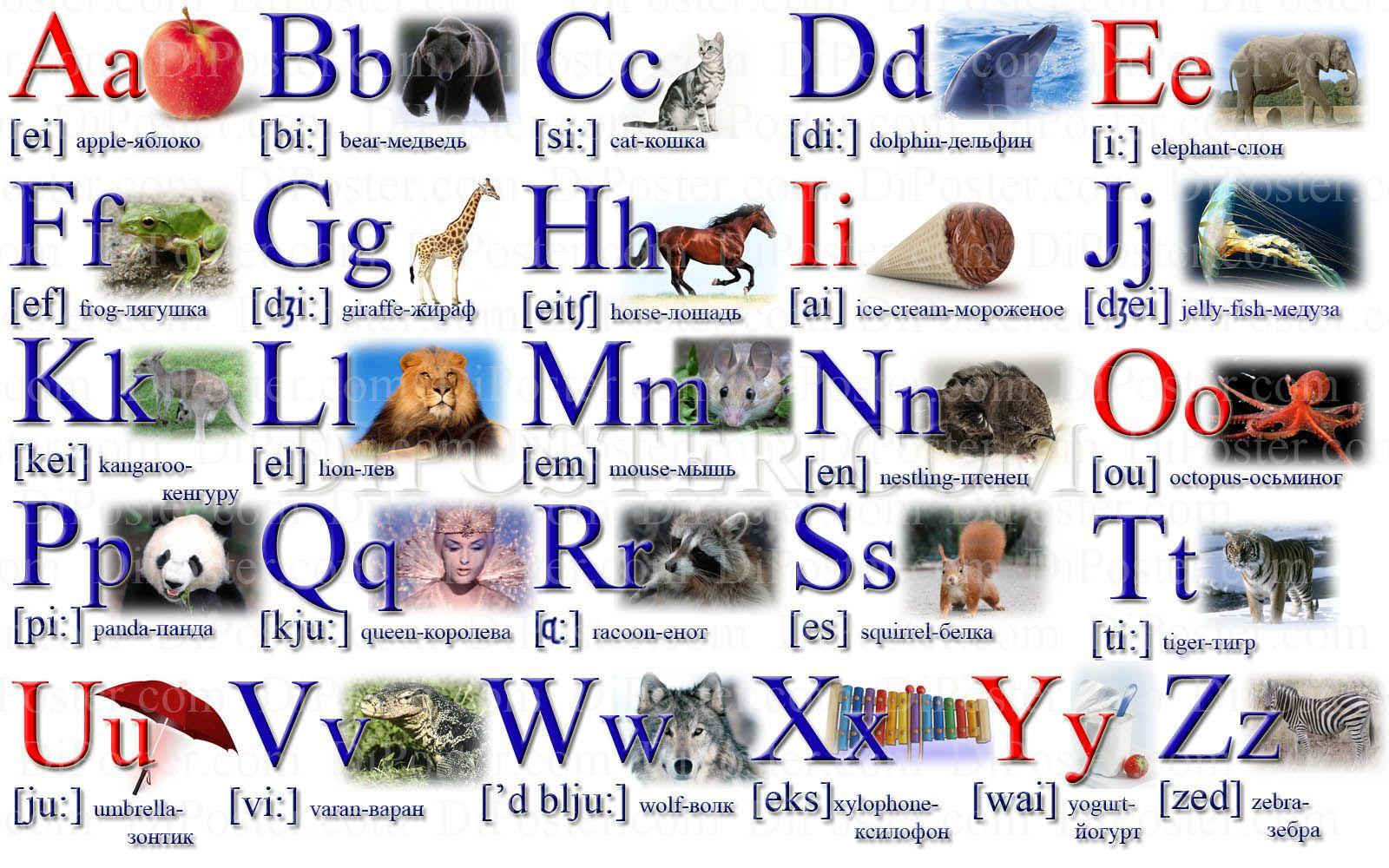 картинки английский алфавит с переводом на русский некоторых ситуациях эта