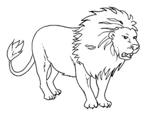 картинка раскраска животное
