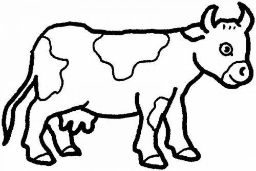 раскраска животное картинка