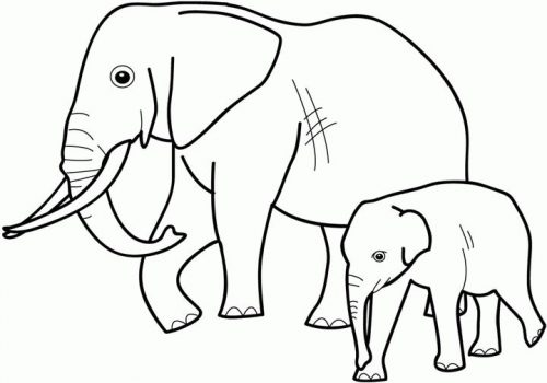 картинка раскраска слон