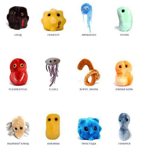 виды микробов картинки
