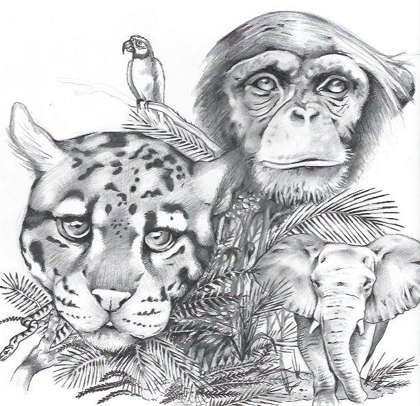 знакомства ребенка с животными
