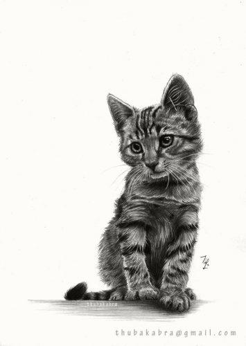 картинки как рисовать животных