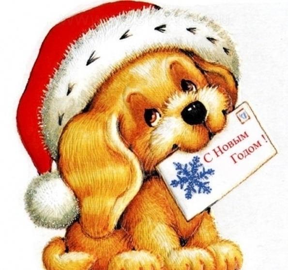 новый год собаки картинка12