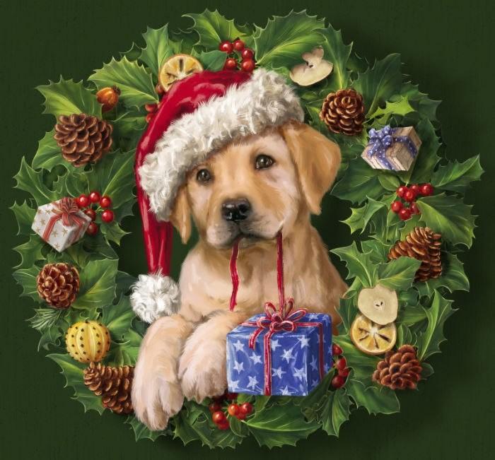 картинки собак на новый год7