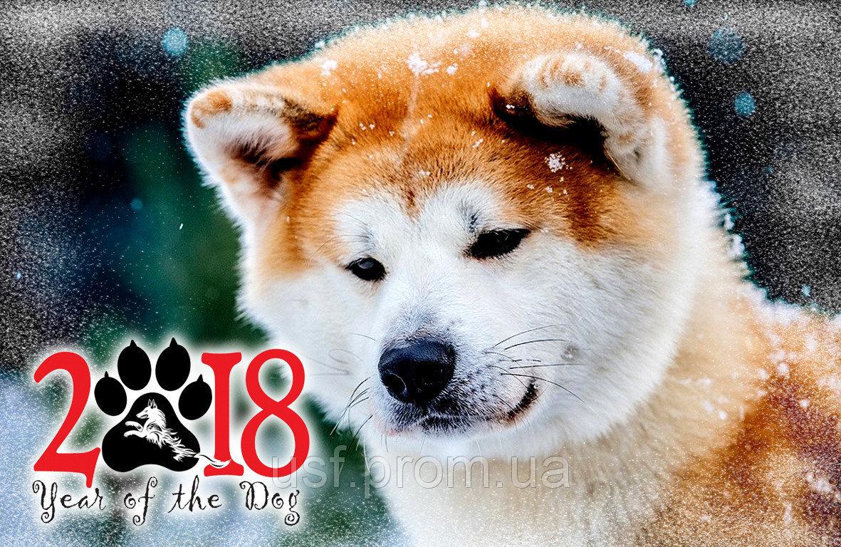 новый год собаки картинка6