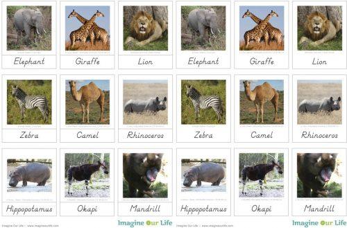 дидактические карточки домашние животные