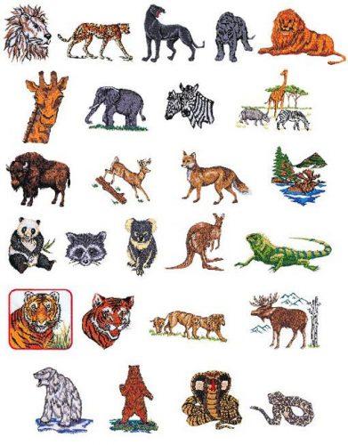 карточки дикие животные
