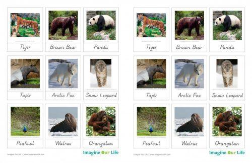карточки животных на английском языке