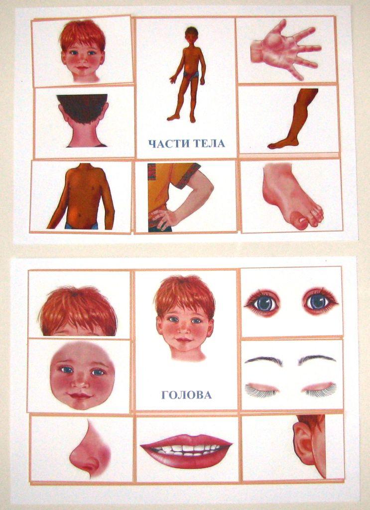 знакомить ребенка с частями тела