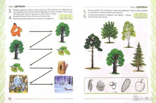 растения задания картинки