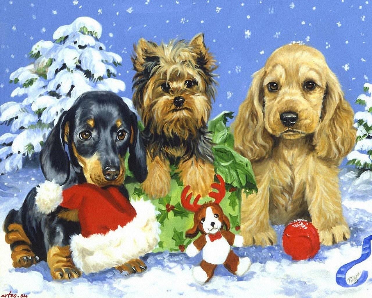 новый год собаки картинка3