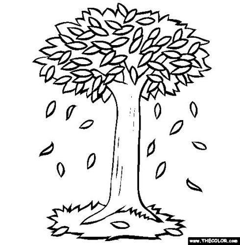 дерево осенью раскраска