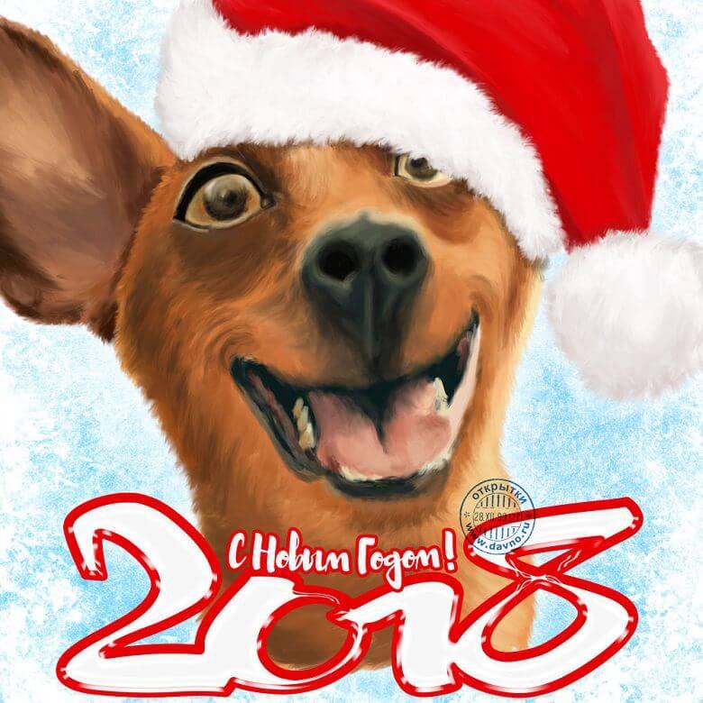 новый год собаки картинка10