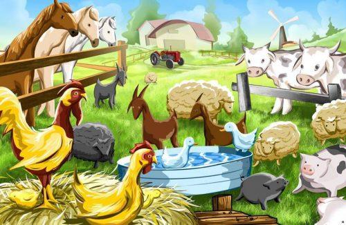 животные где живут картинки
