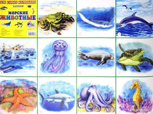 удивительные обитатели морских глубин