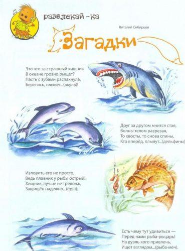 морские обитатели загадки